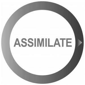Buy Assimilate India